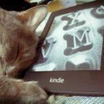 KindleUnpackの使い方:Kindle用の自炊データ(Mobiデータ)を圧縮する。