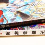 「天野喜孝(イラストレーション別冊)」にも、マイクル・ムアコック作品のイラストはありませんでした。